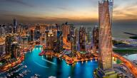 ما هي مساحة دبي