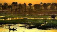 ماذا يحد مصر من الجنوب