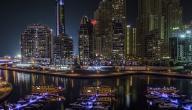 ما عدد سكان دولة الإمارات