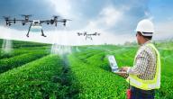 ما هي طرق الزراعة الحديثة
