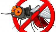 ما وسائل مكافحة البعوض