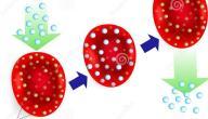نقص الهيموجلوبين في الدم