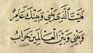 ديوان أبو فراس الحمداني موضوع