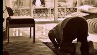 عدد نوافل الصلوات