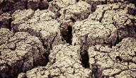 ما هي ظاهرة التصحر