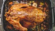 كيفية عمل زربيان الدجاج