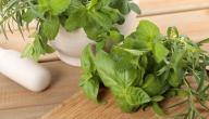 علاج فطريات الفم واللسان بالأعشاب