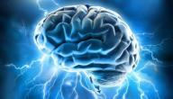 كيفية تنشيط الدماغ