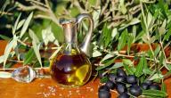 فوائد شجرة الزيتون وزيتها