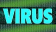 كيفية حماية الكمبيوتر من الفيروسات