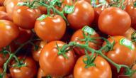 كيفية تصبير الطماطم
