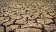 ما هي مظاهر تدهور التربة