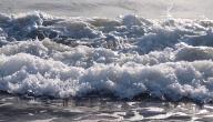 أسباب حدوث ظاهرة المد والجزر
