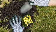 خصائص التربة وأنواعها
