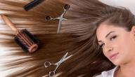 كيفية الوقاية من تساقط الشعر