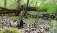 بحث عن تأثير الإنسان على التربة