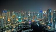 بحث عن مدينة دبي