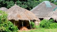 معلومات عن دولة غينيا بيساو