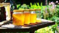 طرق فحص العسل الطبيعي