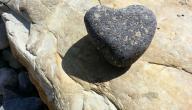 حديث عن قسوة القلب