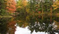 لماذا نحب فصل الخريف