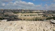 كلمات في يوم القدس العالمي