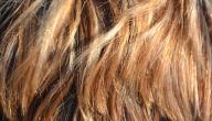 مما يتكون شعر الإنسان