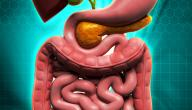 ما أسباب تليف الكبد