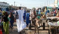 كم عدد قبائل موريتانيا