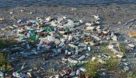كيفية الحد من تلوث المياه