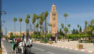 لماذا يقصد السياح مدينة مراكش