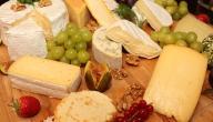 كيفية عمل الجبنة الرومى