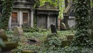 ما حكم زيارة القبور للنساء