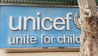 ما هي منظمة اليونيسيف