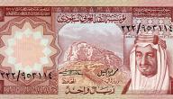 كم دوله عربيه عملتها الريال