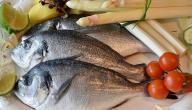 فوائد أكل الأسماك وانواعها