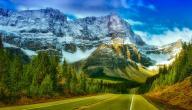 بحث عن كندا