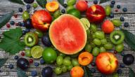 مكونات الغذاء المتوازن