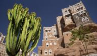 حديث الرسول في أهل اليمن