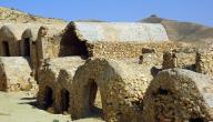 بحث عن دولة تونس