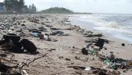 أضرار تلوث البحار