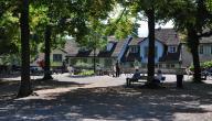 أفضل الأماكن السياحية في زيورخ