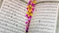 بحث عن آية في القرآن