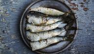 حساسية من السمك
