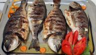 أطباق من السمك