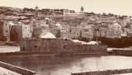 تاريخ دولة فلسطين
