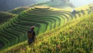 أكبر الدول الزراعية في العالم