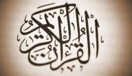 أسرار ترتيب سور القرآن للسيوطي