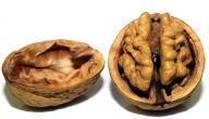 أطعمة تغذي الدماغ