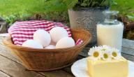 أطعمة تدر حليب الأم